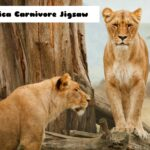 Africa Carnivore Jigsaw