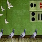 Pigeon Escape 2